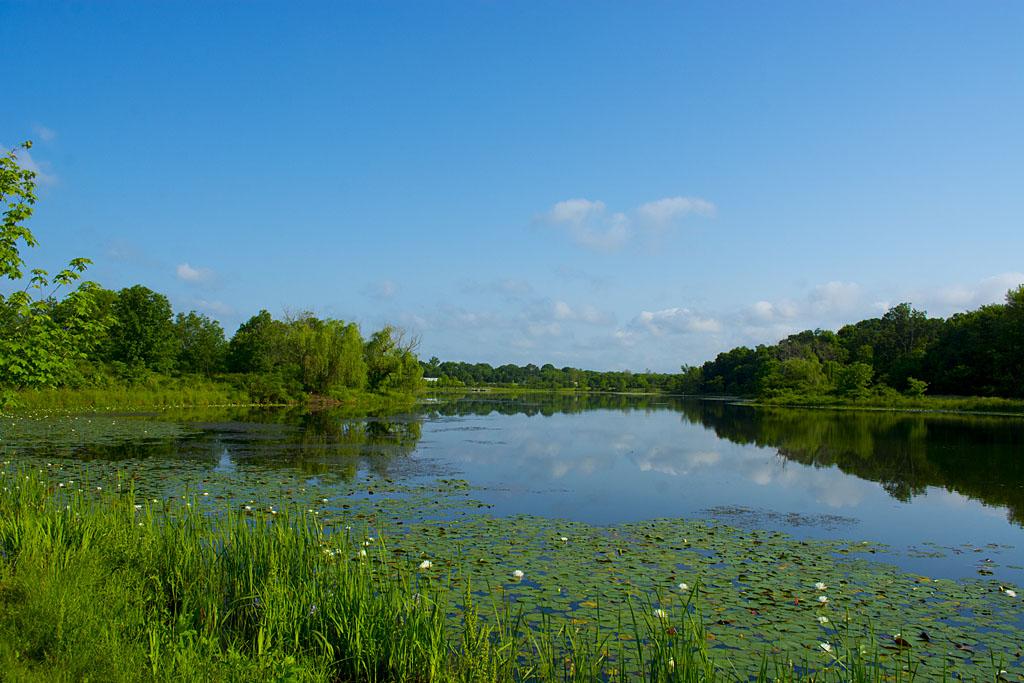 Lake Artemesia 13
