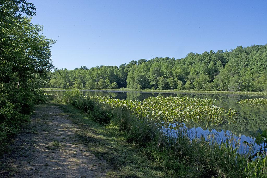 GB Lake 6