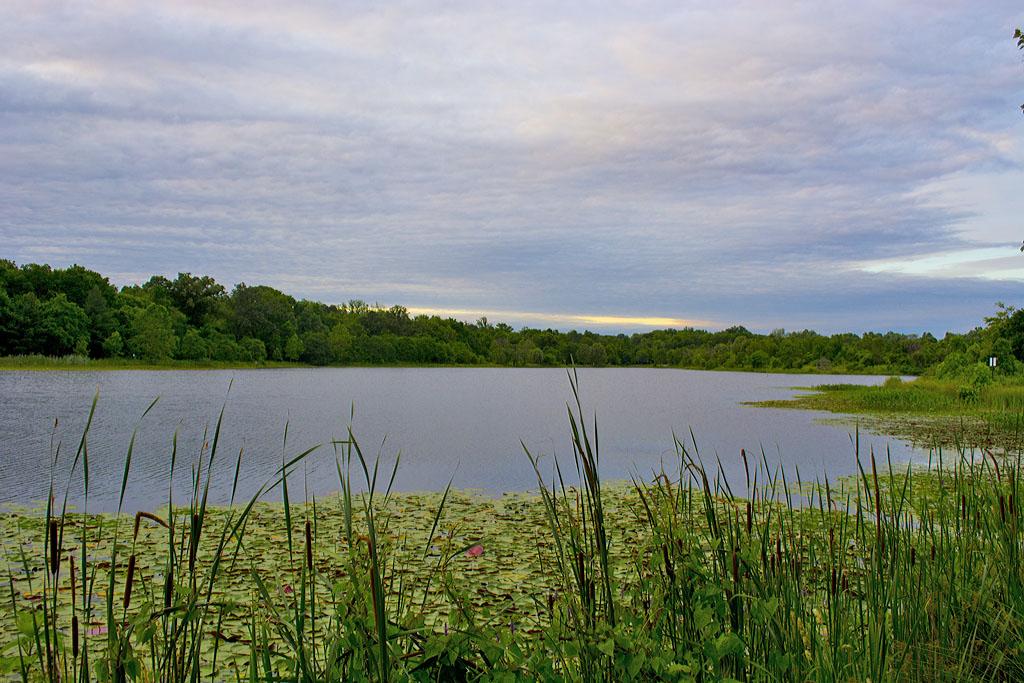 Lake Artemesia 23