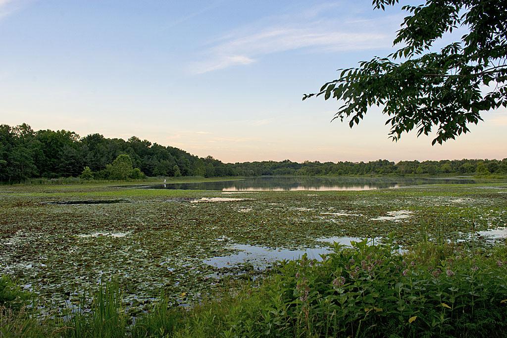 Lake Artemesia 27