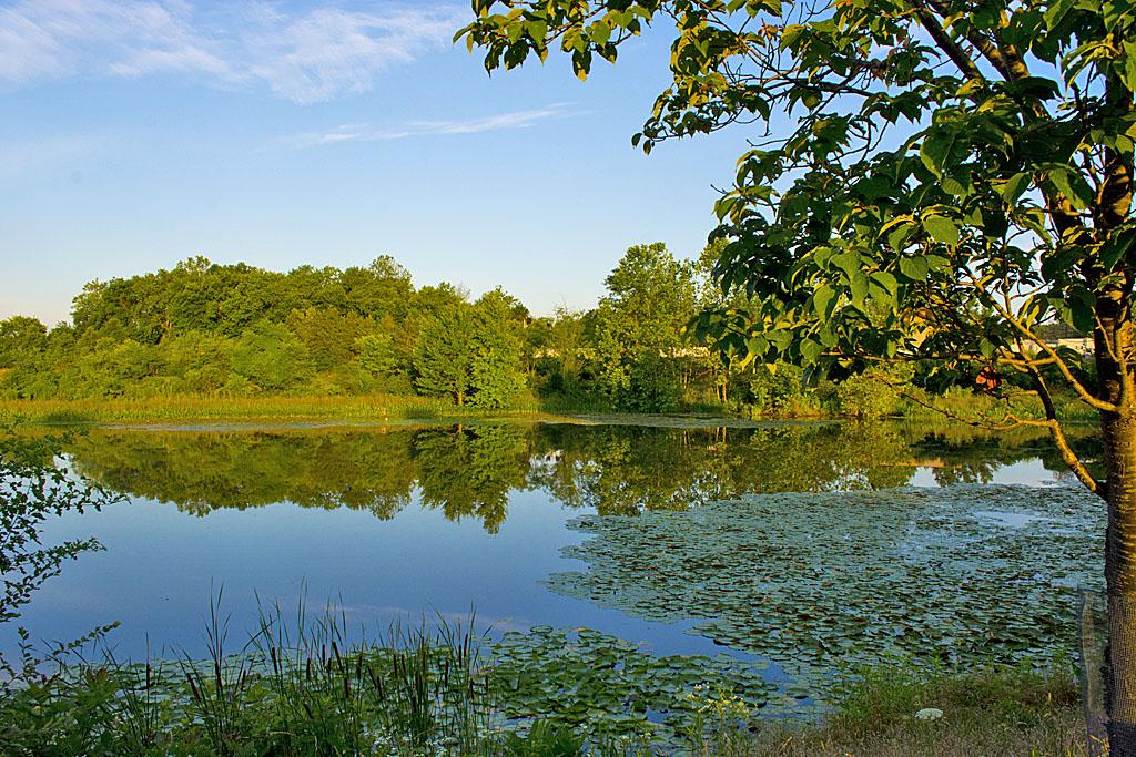 Lake Artemesia 28