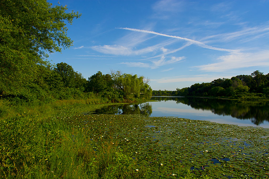 Lake Artemesia 33