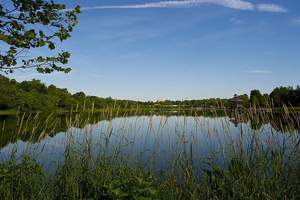 Lake Artemesia 34