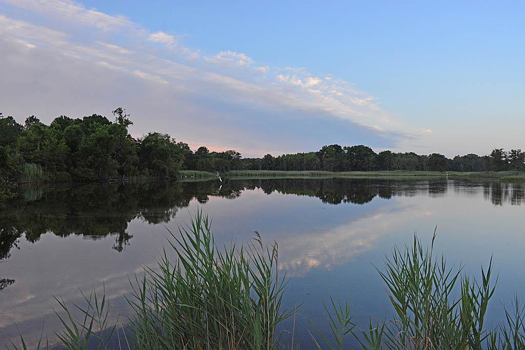 Marsh Pond 20